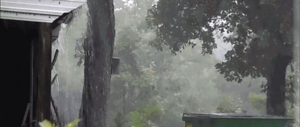 Rain-Shot-6-15-15